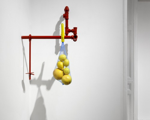 Red Water Pipe with Hanging Citrus (lemons, grapefruits, nutrition, refresh, recline), 20142