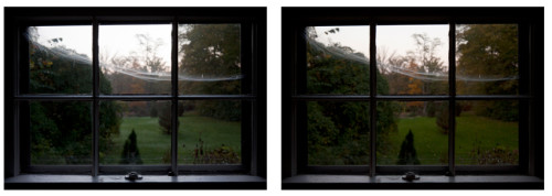 3.A Web Built by a Spider in my Window While I Was Away |  Version A&B |  Archival Inkjet Print |  2013 |  18x25 in (A&B)