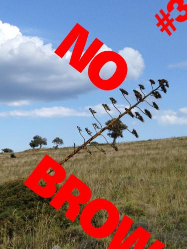 NO_BROW